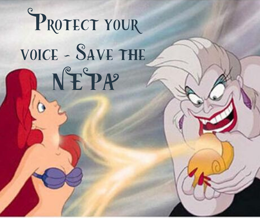 image of Protect Your Voice - Save the NEPA!
